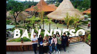 Bali Ndeso Kemuning Jawa Tengah
