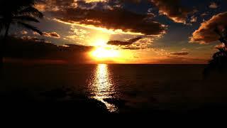 Lana del rey - summertime sadness live ...