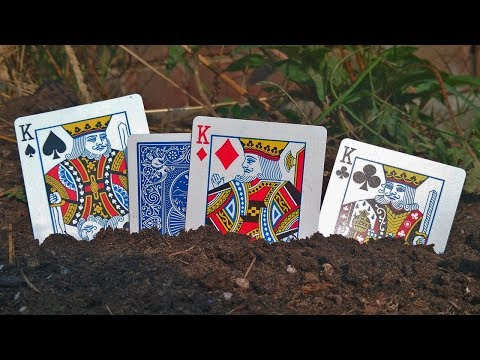 AMAZE FRIENDS WITH 'EARTHQUAKE' CARD TRICK! (Magic Secrets Revealed!)