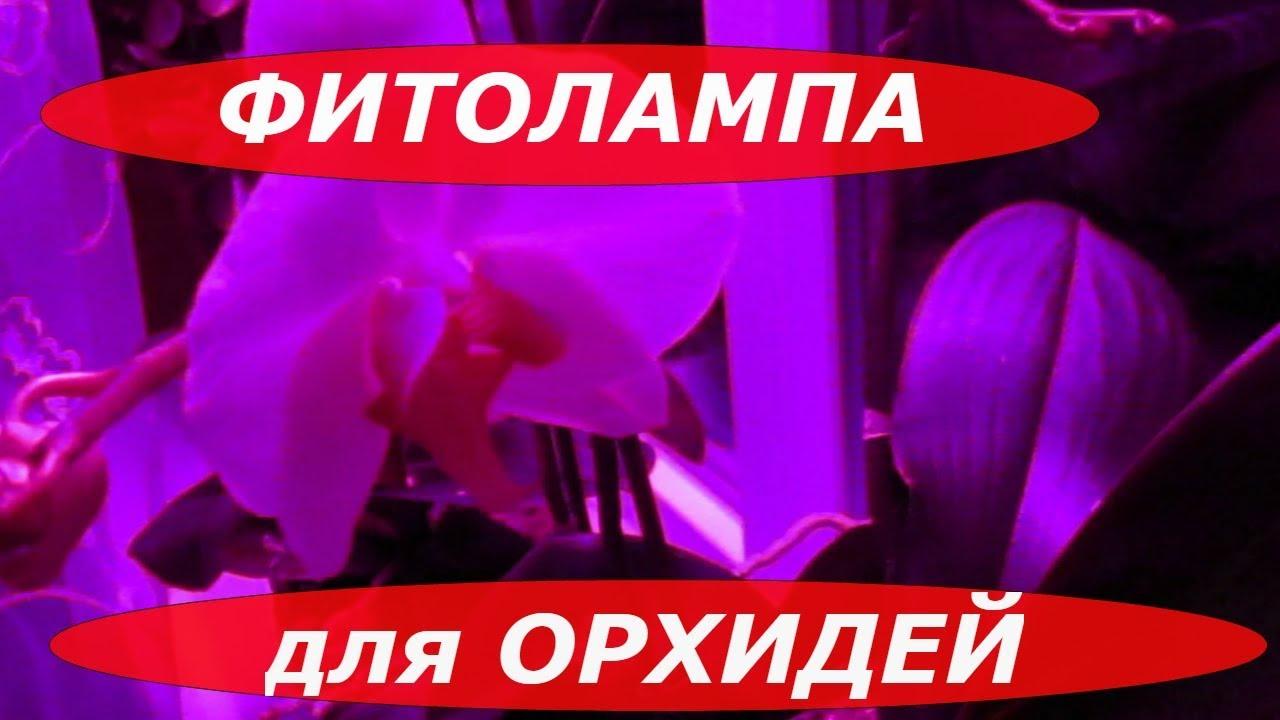 Производство лаваша - окупаемость оборудования 2 месяца! - YouTube