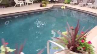 Pool Plaster New Hope Pa - Pineapple Hill Inn Bed & Breakfast
