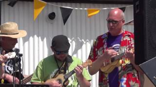 Wirral Ukulele Orchestra at N