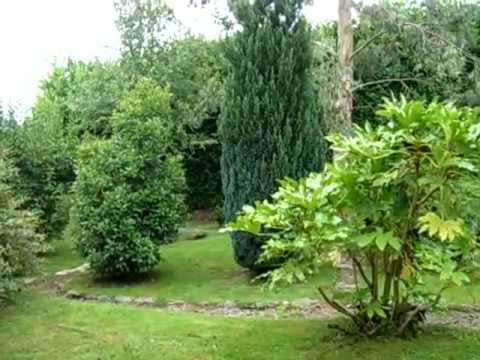 un jardin exotique en normandie youtube. Black Bedroom Furniture Sets. Home Design Ideas
