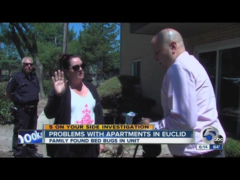 Euclid Apartments Bed Bugs