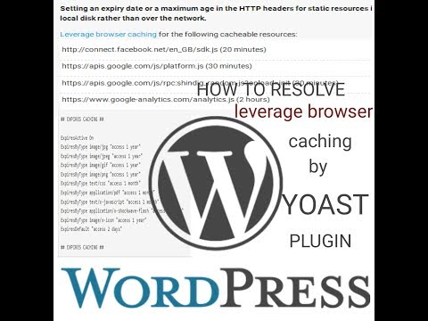 how to solve leverage browser caching in wordpress by yoast plugin