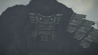 Shadow of the Colossus PS4: Colossus #15 Argus Boss Fight