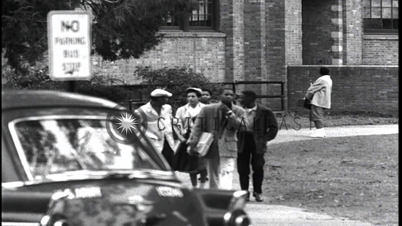 Can african american escorts delirium mistaken