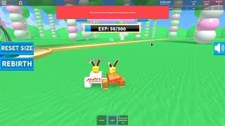 (Roblox) recebendo 2 nascimentos, 3 renascimentos, então 4 nascimentos em Rabbit Simulator 2 com springbonnie939