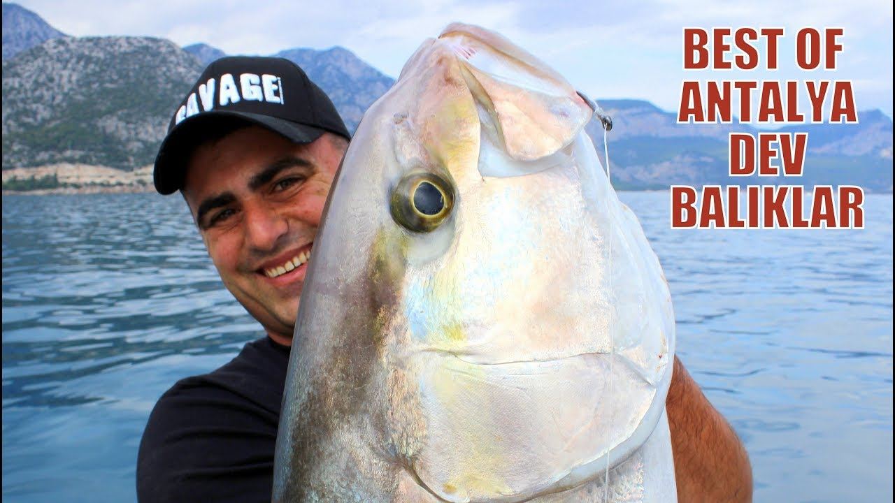 Deli Mi Ne ile Efsane Hareketler ve Dev Balıklar Mix