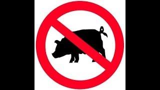 Porque los judíos no comen carne de cerdo