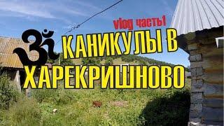 Поездка в деревню/ Посиделки на Инзере / Жарим Маршмеллоу на костре