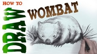 How to Draw a Wombat (advanced)- Spoken Tutorial
