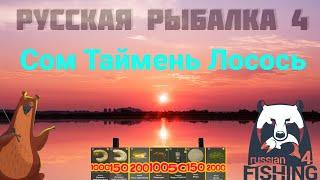 Русская рыбалка 4 стрим Форумный турнир Сом Таймень Лось