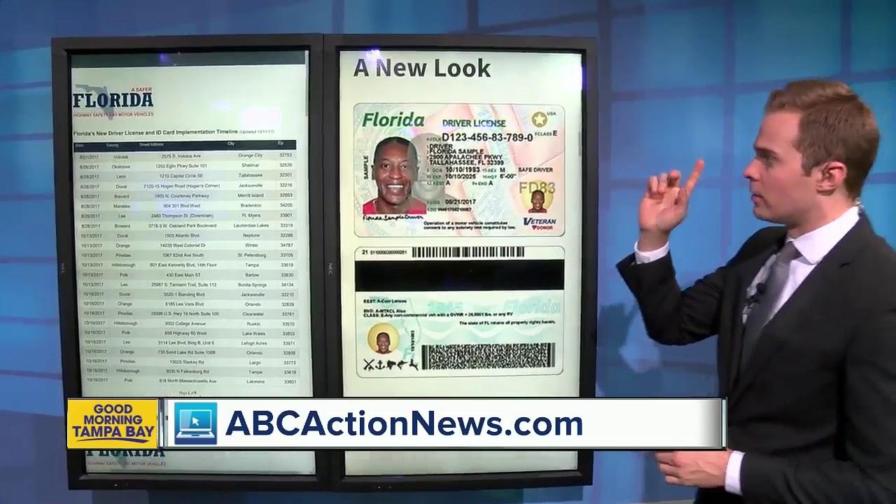 Licence Number Driver Number Florida Florida Florida Driver Licence Driver