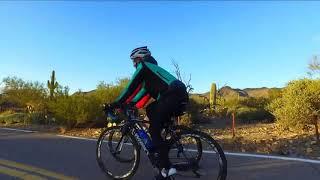 Road Biking, Tucson & Saguaro National Park