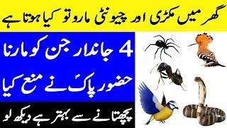 Hazoor Pak (PBUH) Nay Kin 4 Jandaron K Shikar Say Mna Farmaya