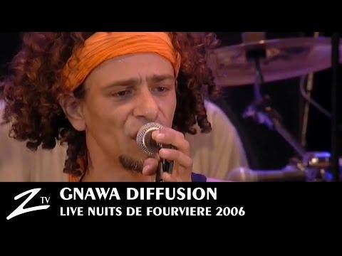 Gnawa Diffusion - Timimoun Tombouctou - LIVE