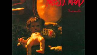 Babes in Toyland - Fontanelle [Full Album]