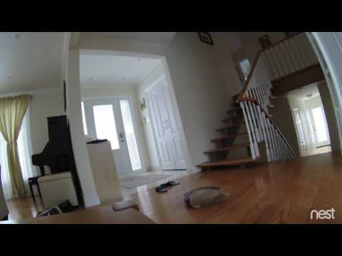 Roomba Committing Suicide - Video