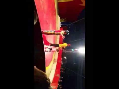 cirque europa gougeon les clowns