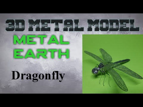 Metal Earth Build - Dragonfly