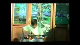 Tom Delonge Acoustic The Fallen Interlude (blink-182)