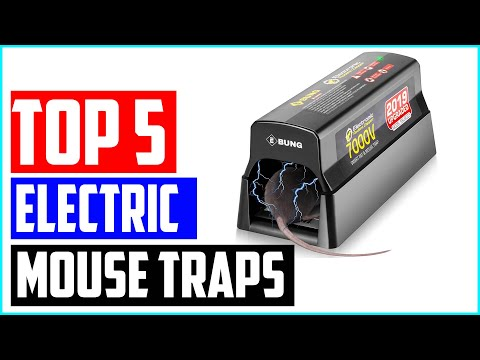 Top 5 Best Electric Mouse Traps In 2020