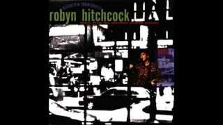 Watch Robyn Hitchcock Where Do You Go When You Die video
