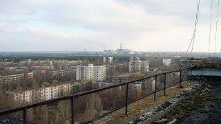Czy w okolicach Czarnobyla żyją zwierzęta? [Pixel]