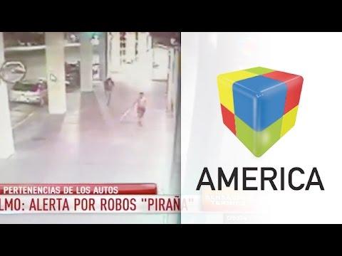 "San Telmo: Preocupan los ataques ""pirañas"""