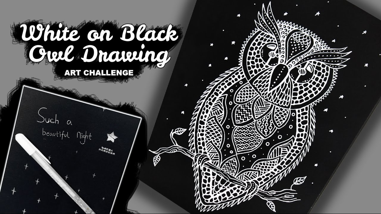 How To Draw Owl White On Black Paper Drawing Zentangle Doodle Style