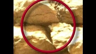 Mars Curiosity,Possible Snake