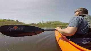 Kayaking Assonet River to Stacey Creek