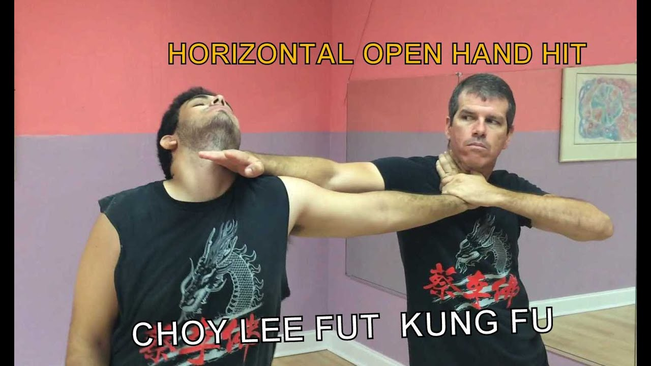 Kung Fu Horizontal Open Hand Hit - YouTube