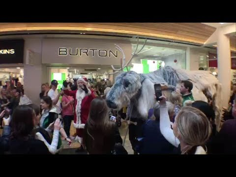 0d9782115 FIRST LOOK: Santa's Puppet Reindeer Parade at Sheffield's Meadowhall