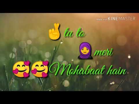 Tu Mera Diwanapan Hai Whatsapp Status Video Tik Tok Not Available