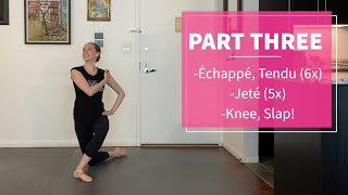 Beginner Level: NYCB's Kristen Segin, Ballet Lesson (SPAC Virtual Dance Lab)