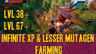 The witcher 3: xp and lesser mutagen farming( blue green red) patch 1.22 pc,ps4,xbox