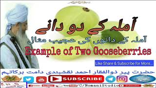 Amla Ke Dano Ki Ajeeb Misal by Peer Zulfiqar ahmad naqshbandiآملہ کے دو دانوں کی عجیب مثال
