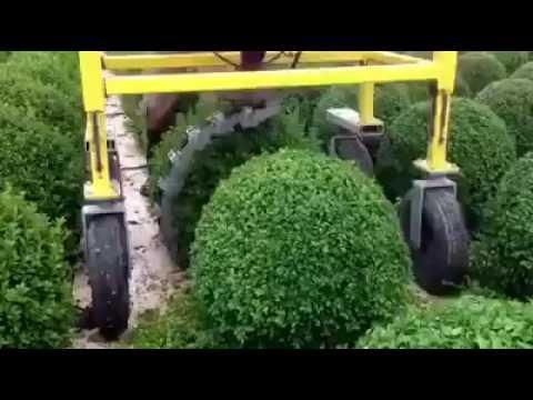 Innovative Garden Amazing Machines