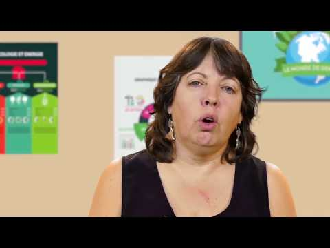 Éducation au développement durable : ce que disent les programmes scolaires en Belgique