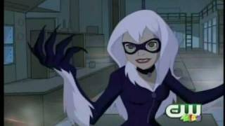 spectacular spider man enter the black cat
