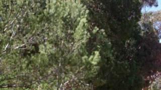 Коста Брава, Бухта отдыха 7(, 2009-04-19T12:03:11.000Z)