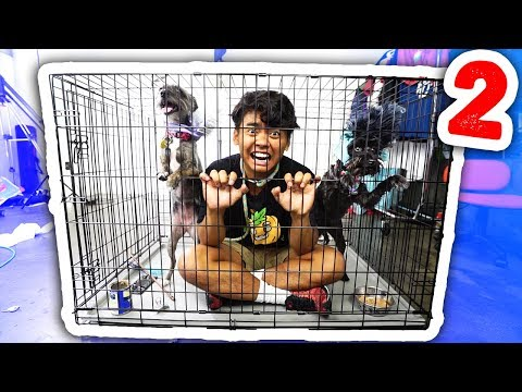 Escape The Dog Cage 2!