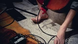 Cloud Cult - Transistor Radio (Live on KEXP)