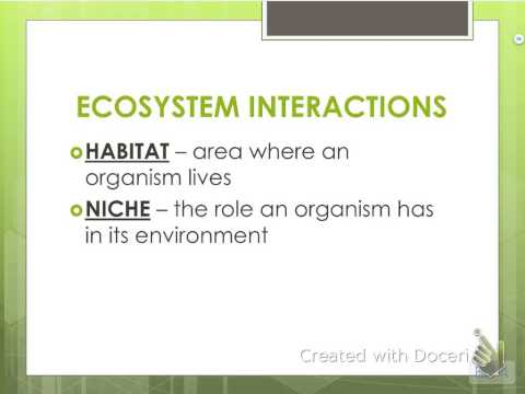 Ecology Notes - Organisms & Their Relationships