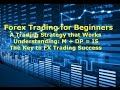 Forex Trading for Beginners Building an FX Strategy that Works the Key M + DP = IS
