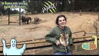 WE BOUGHT A ZOO!!!