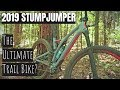 2019 Specialized Stumpjumper Review | Best New Mountain Bike?
