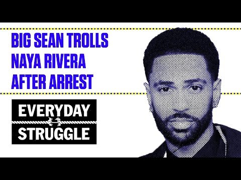 Big Sean Trolls Naya Rivera After Arrest  Everyday Struggle